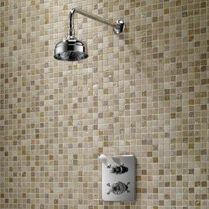Avon Dual Control Mixer Shower