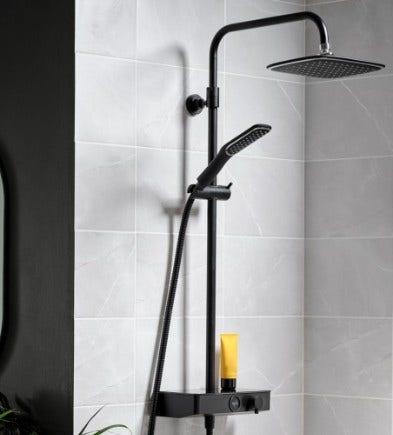 Triton Mixer Showers