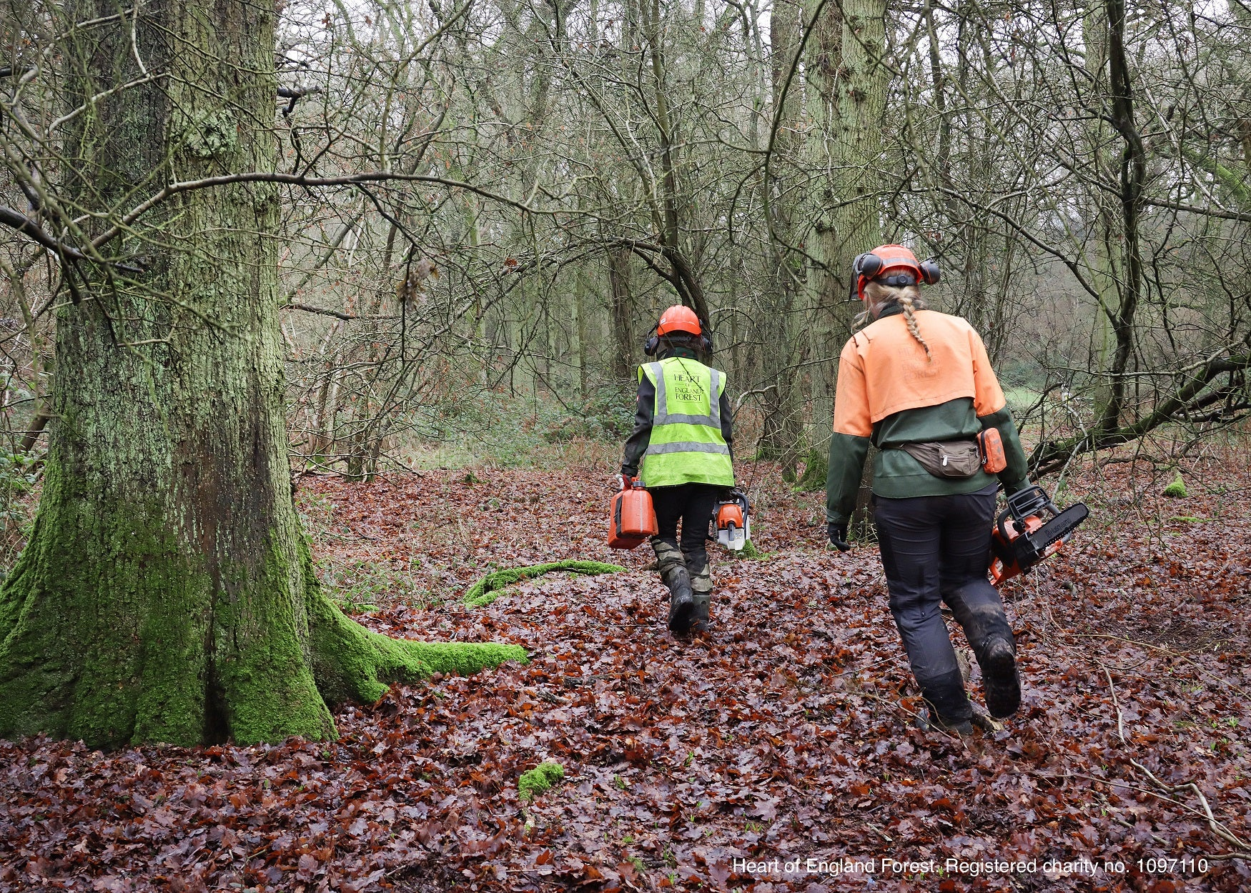 Triton partners with Heart of England Forest